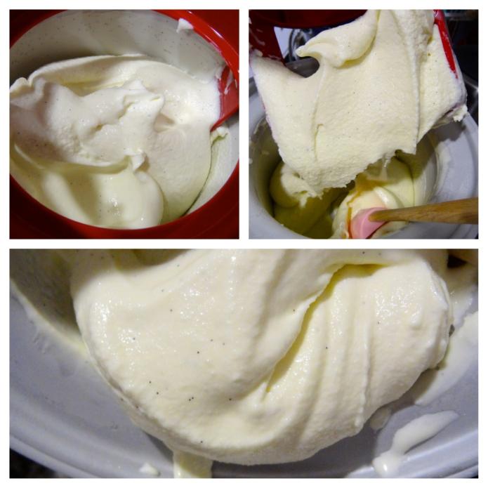 Malted Vanilla Milkshakes 10