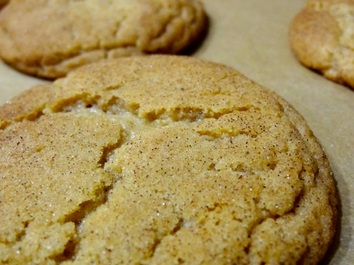 Brown Butter Snickerdoodles - 23